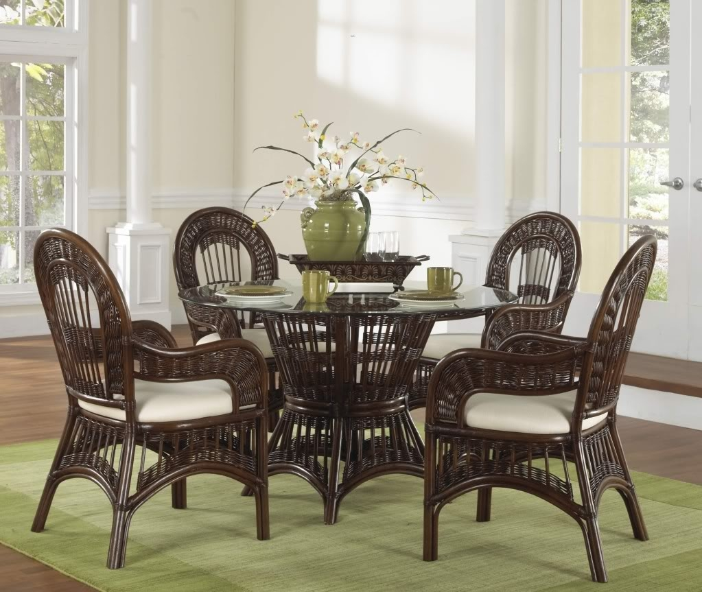 Dining Room Rattan Dining Chairs With Saloom Furniture And Glass