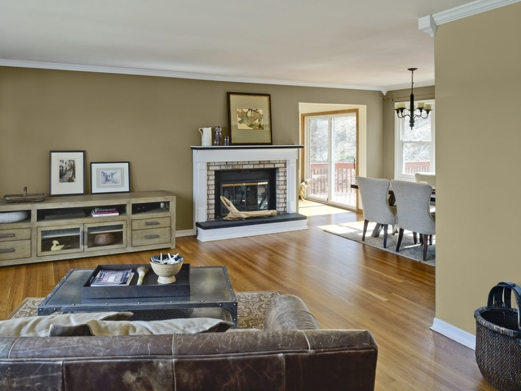 Earth Tone Paint Colors For Living Room Home Maximize Ideas