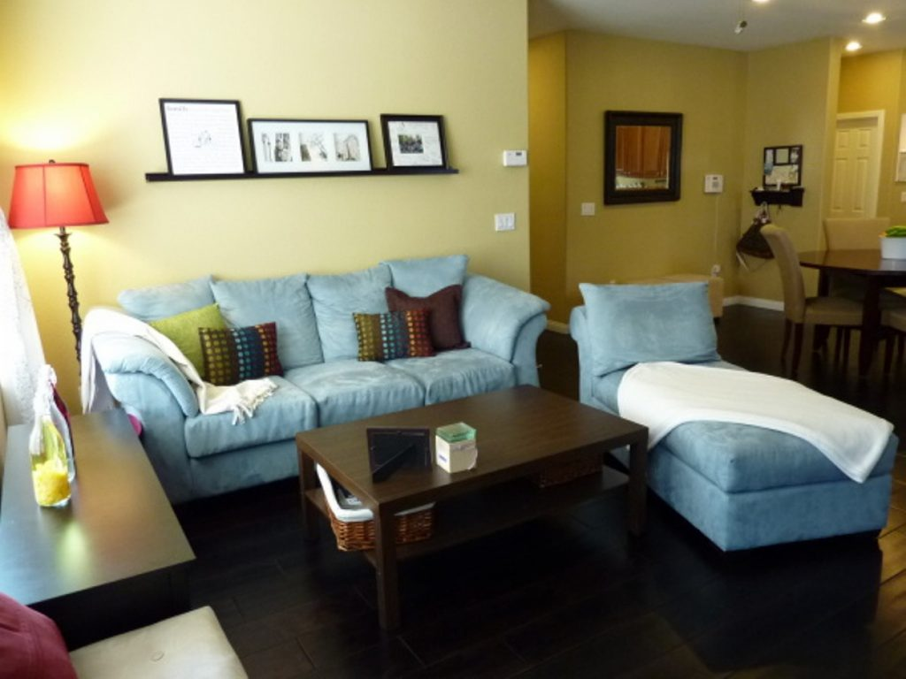 Engaging How To Decor Living Room Of Apartment 11 First Decorating