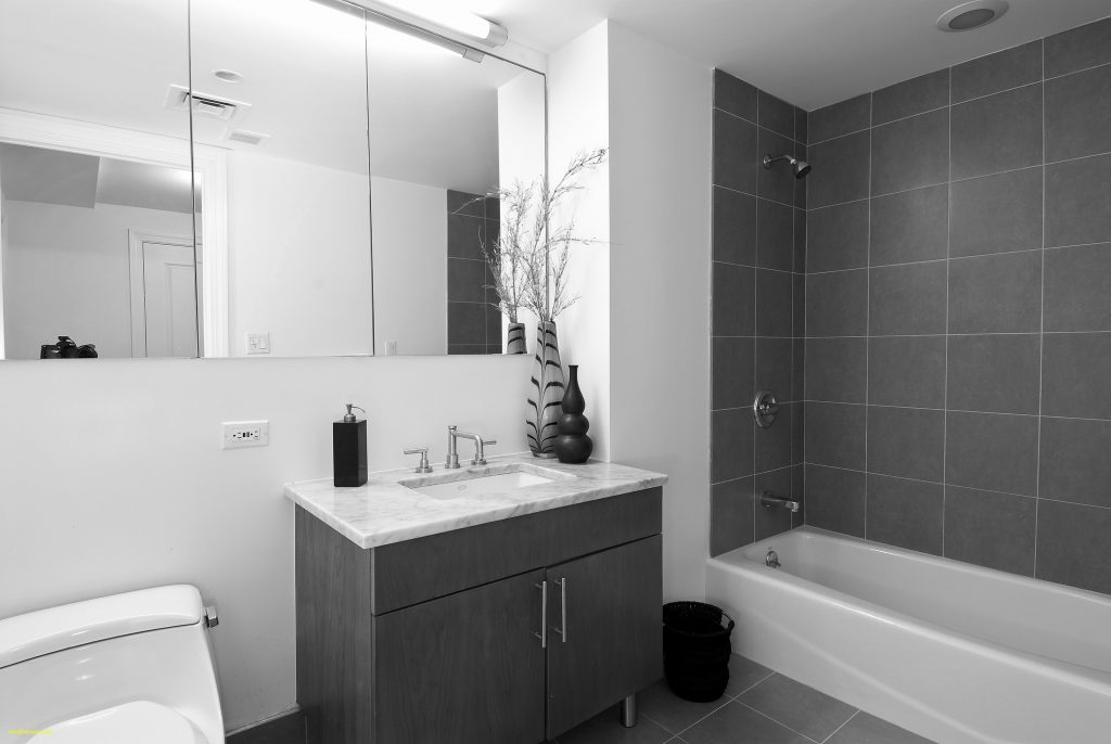 Lovely Small Bathroom Ideas Grey And White New Black Bathrooms