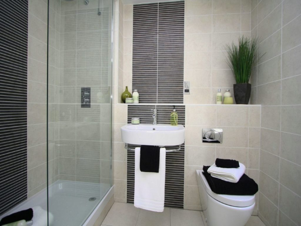 Small Ensuite Bathroom Designs Excellent Bathrooms Decor Small