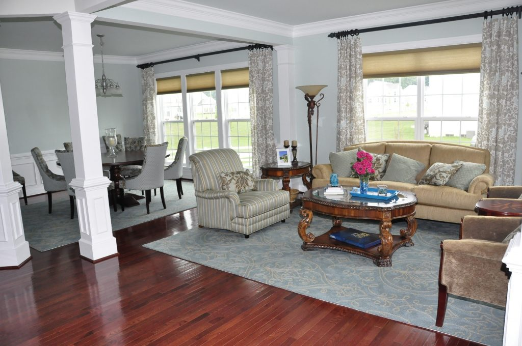 Decorating Ideas For Small Living And Dining Room Combo Elegant
