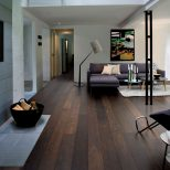 Living Room Marvelous Living Room With Dark Wood Floors Image Ideas