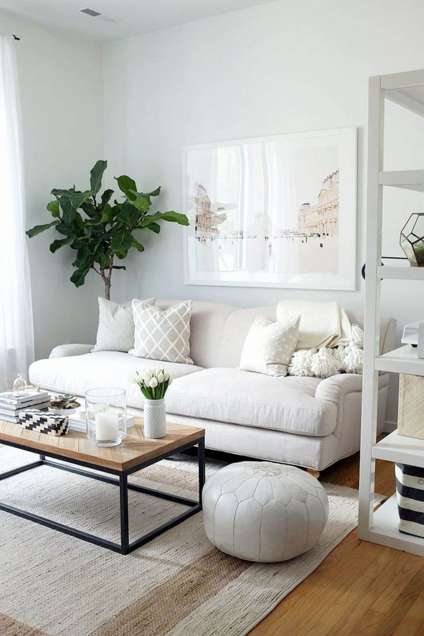 Serene Small Living Room Decor Idea Homebnc