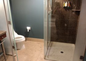 Water Closet with Bathroom and Shower