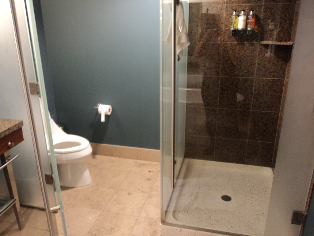 Bathroom With Glass Partition Water Closet And Shower Flickr