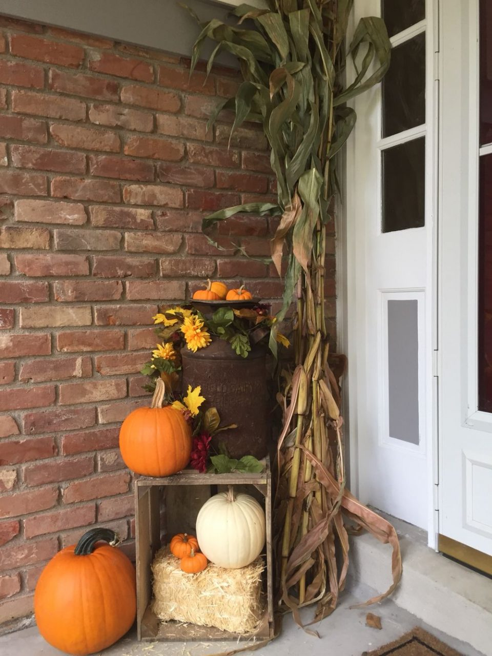 My Fall Front Porch Old Milk Can Corn Stalks And Crate