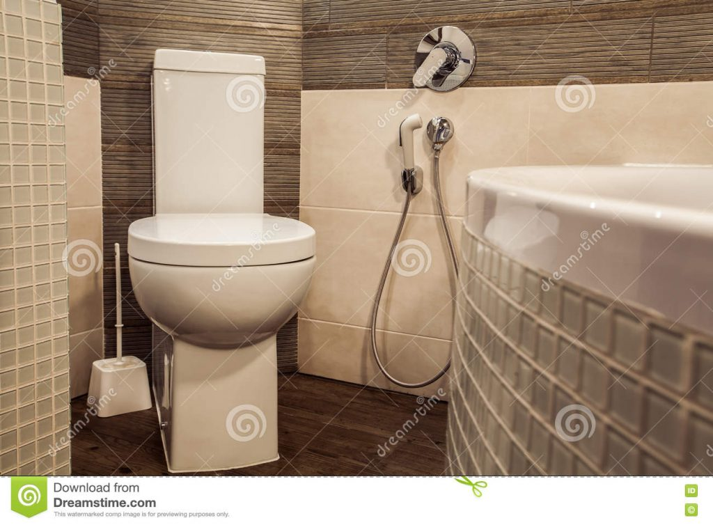 Toilet Room In Scandinavian Style Decorated With White Built In
