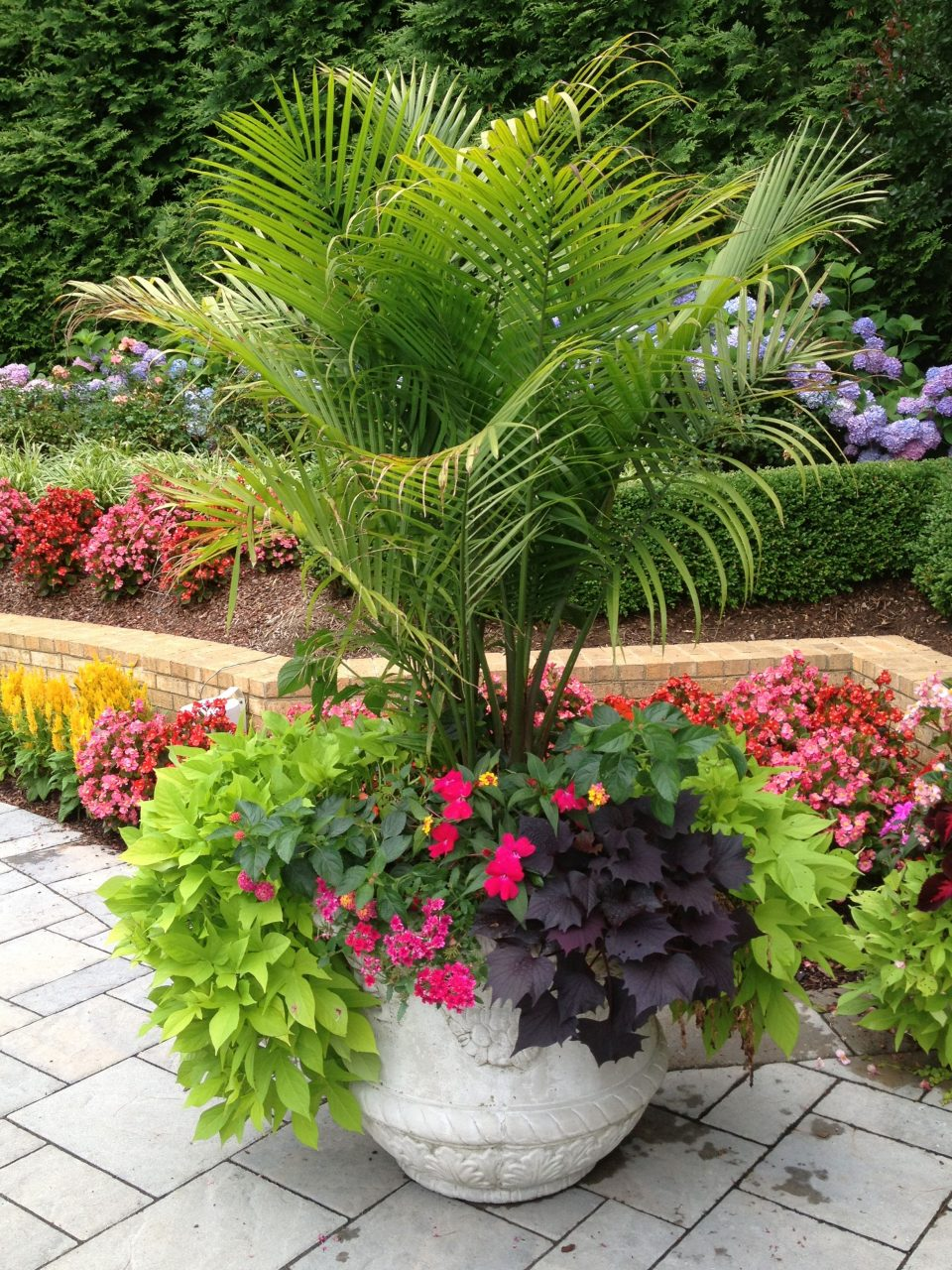 Tropical Patio Design Ideas Landscape And Outdoor Diy Container