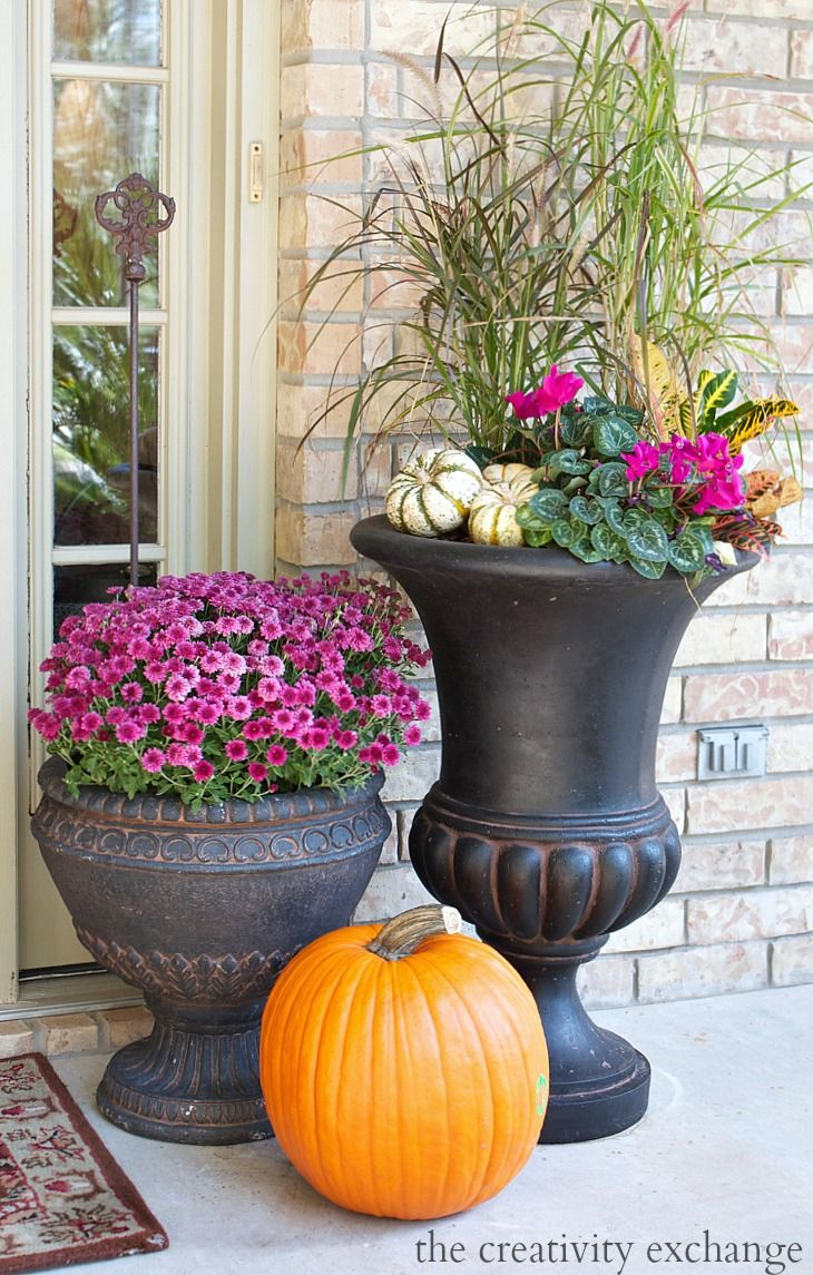 Archaic Autumn Porch Decorations Feature Orange Fresh Pumpkins And