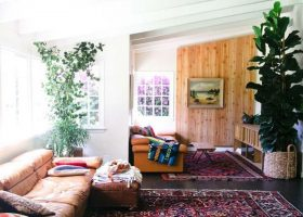 Bohemian Living Rooms with Plants