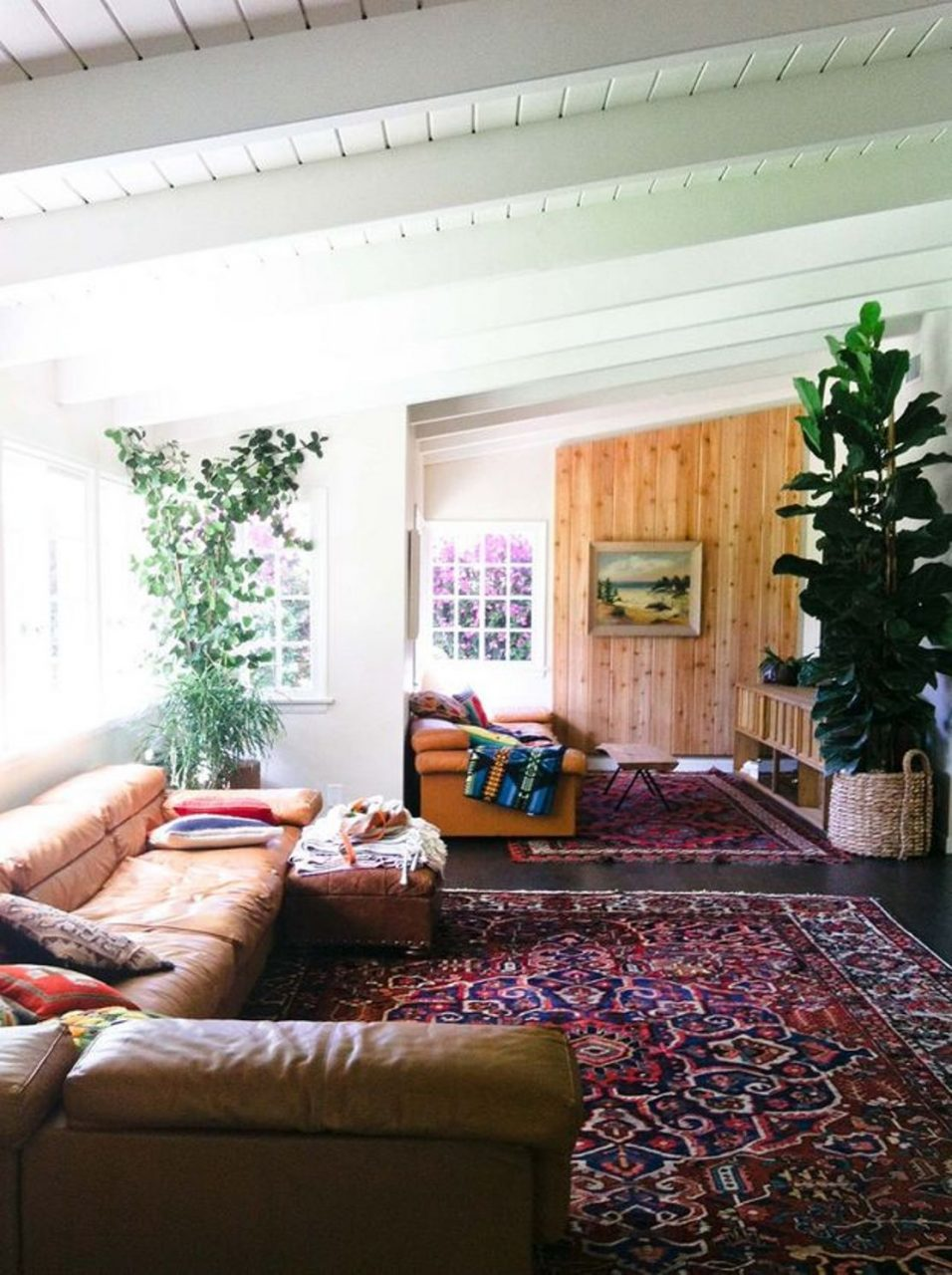 Bohemian Living Room Design With Bohemian Carpet And Indoor Plants