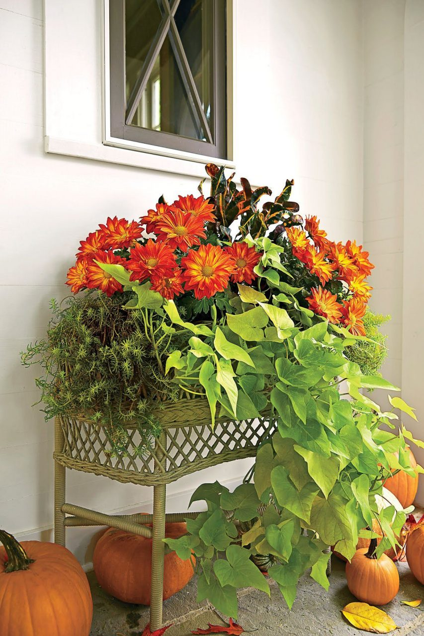 Fabulous Fall Decorating Ideas Fall Pinterest Fall Containers