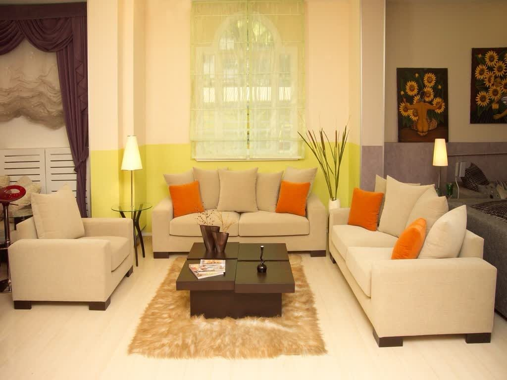 Feng Shui Living Room Colors In Cold Type Creative Home Decor
