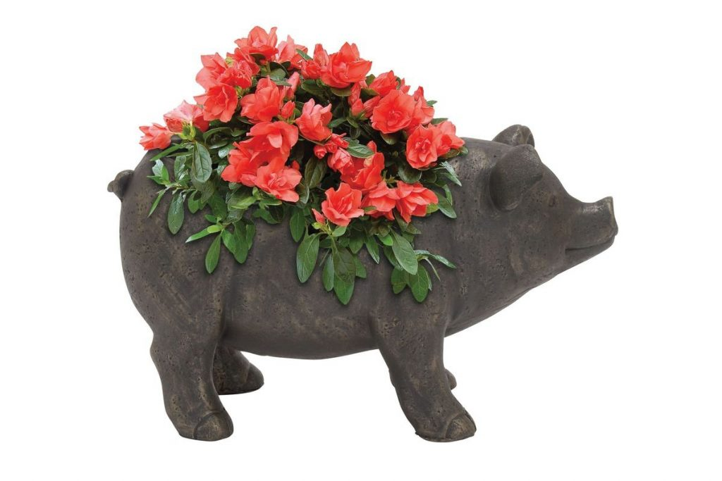 Great Outdoors Rustic Ceramic Pig Flower Pot At Gardner White