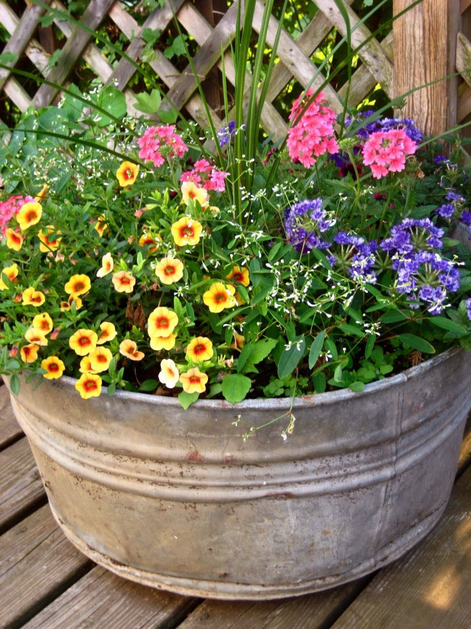 Outdoor Flower Containers This Galvanized Old Pot Contains Four
