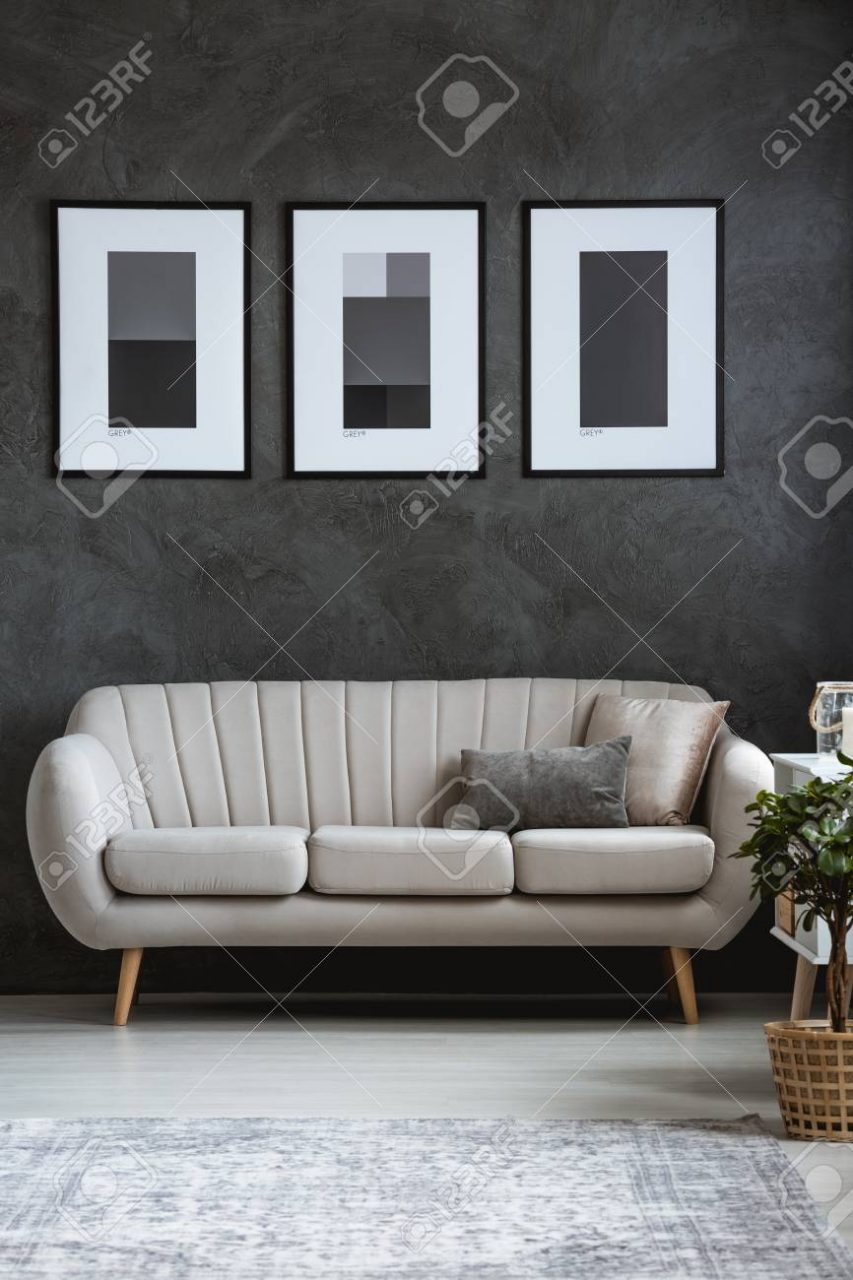 Simple Dark Posters Above Modern Sofa In Sophisticated Living