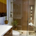Small Luxury Bathroom Design Ideas