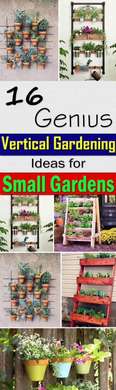 16 Genius Vertical Gardening Ideas For Small Gardens Balcony