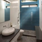 Bathroom Tile with Accent Wall