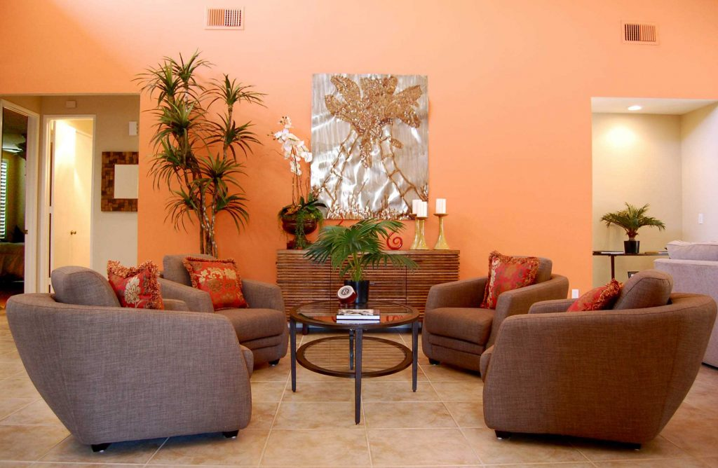 Burnt Orange And Brown Living Room Ideas Pictures Color Chocolate