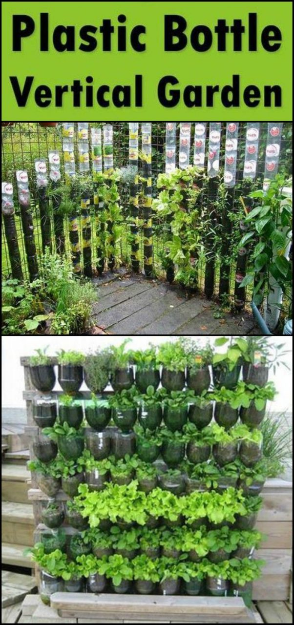 Diy Vertical Garden Ideas For Indoors And Outdoors Diy Vertical