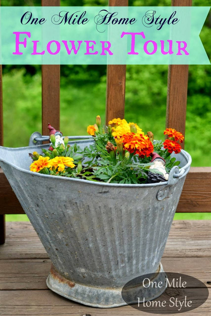Flower Tour Outdoor Spring Decor Tips