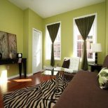 Olive Green Living Room Decorating Ideas Living Room Ideas