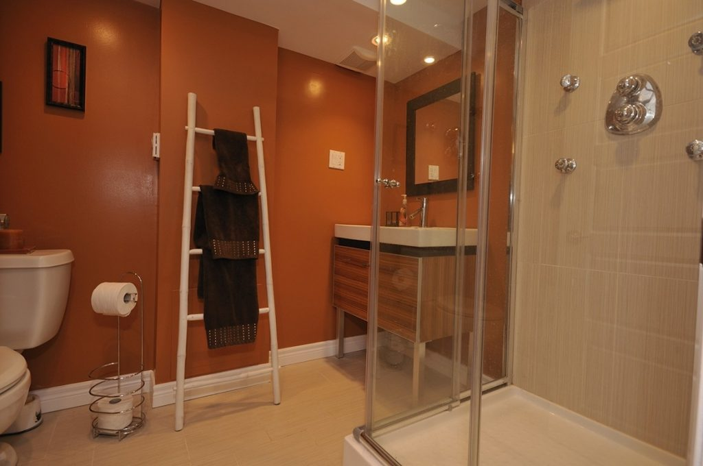 Basement Bathroom Design Layout For Small Spaces Basement Bathroom