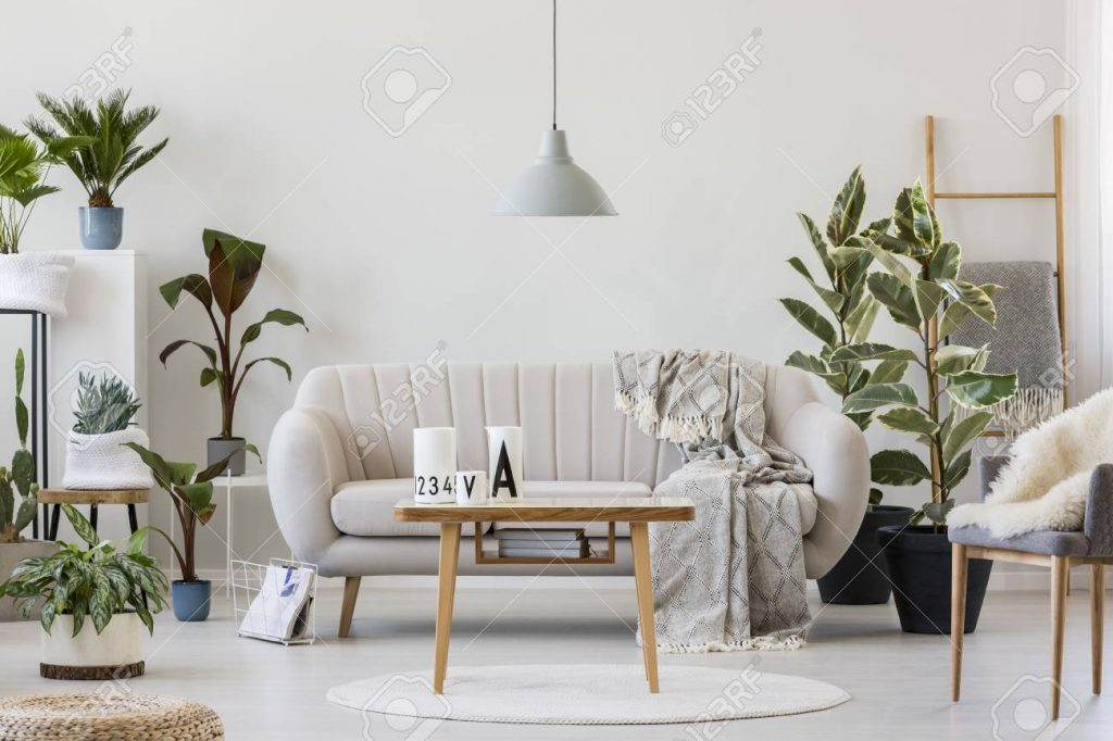 Gray Lamp Above Wooden Table Near Beige Sofa In Cozy Living Room