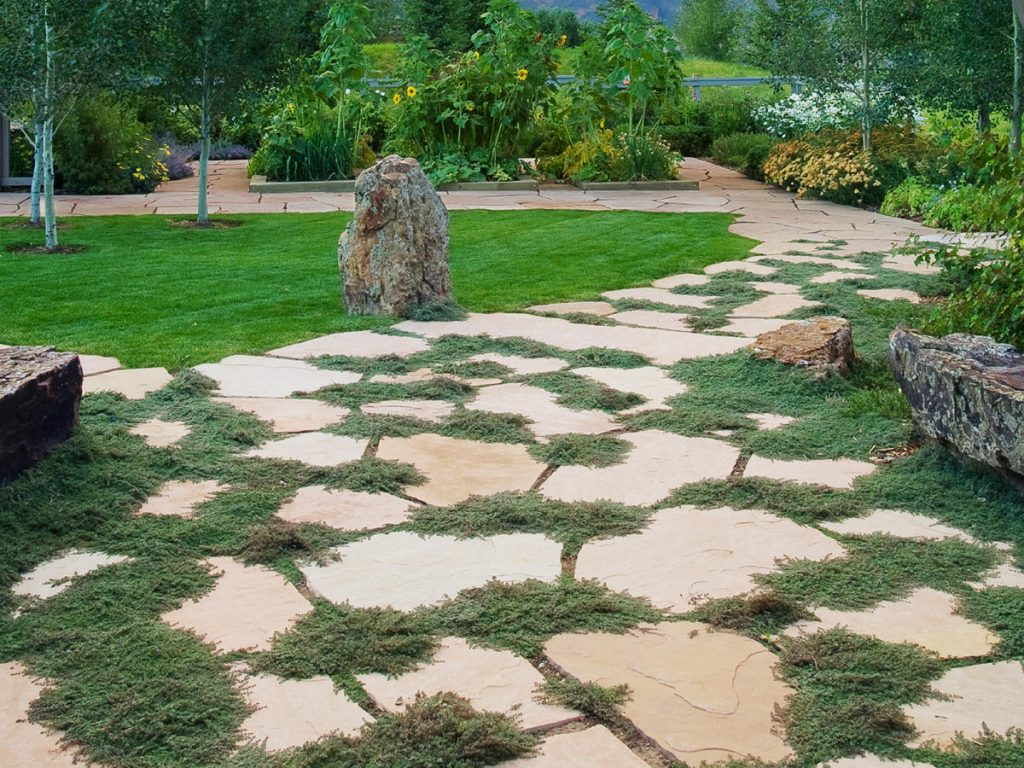 Great Garden Paths Sunset Magazine