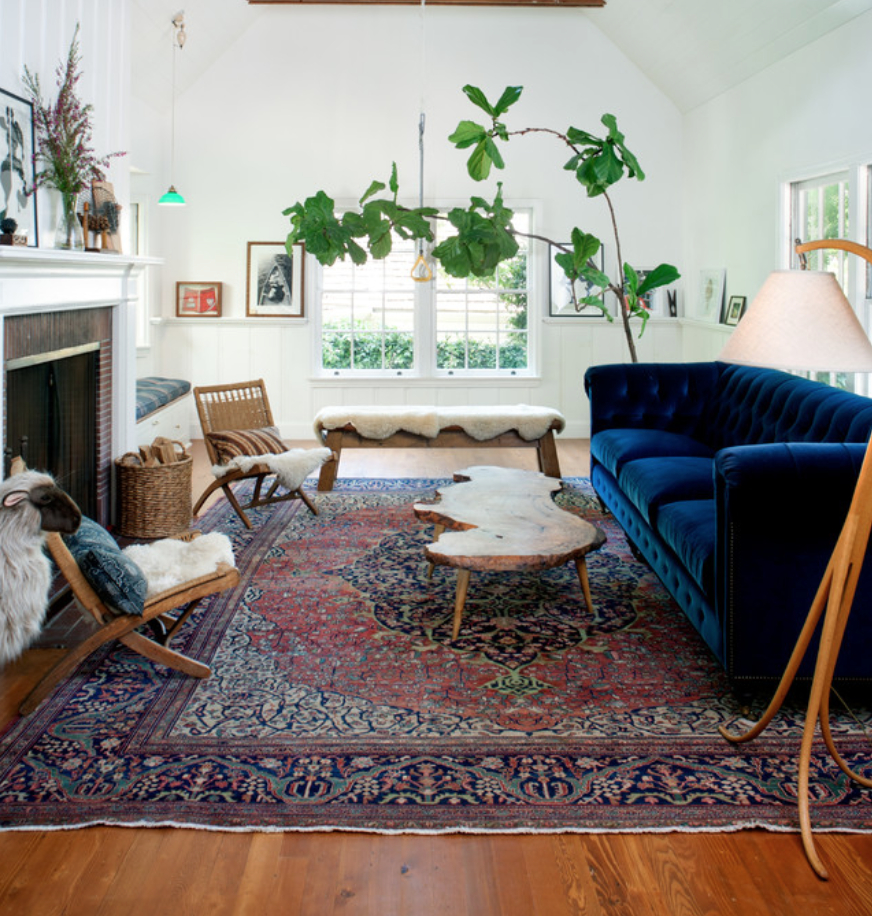 Like Oriental Rug Plant And Blue Couch From Anthropologie Home
