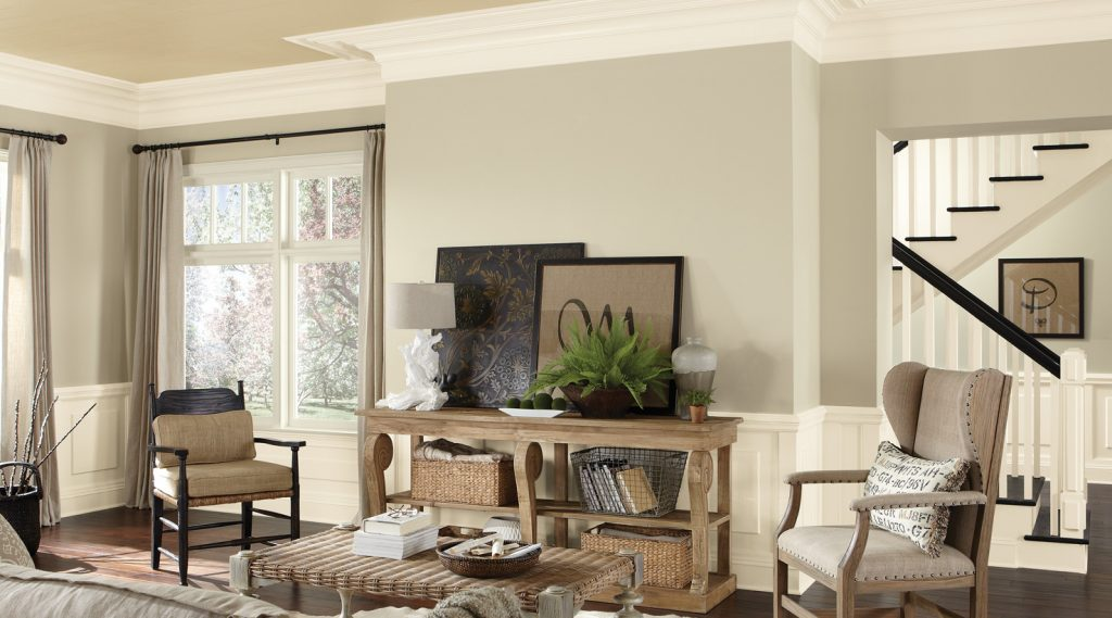 Living Room Paint Colors Ideas For Palettes And Color Schemes