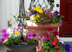 Summer Front Porch Flower Pot Ideas