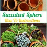 60 Erstaunliche Diy Succulents Garden Decor Ideas Decomg