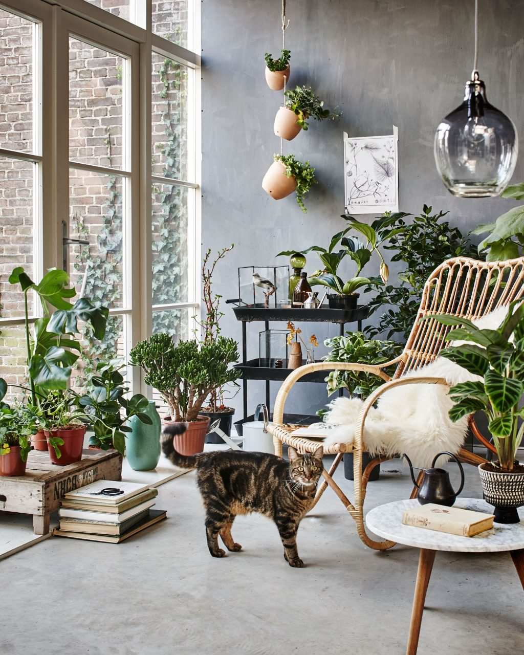 Botanic Living Room Orangery With A Rattan Chair Plants Flowers
