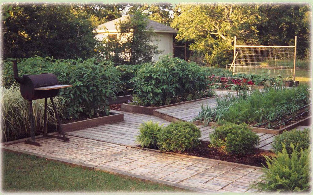 Lessons From A Deck Garden