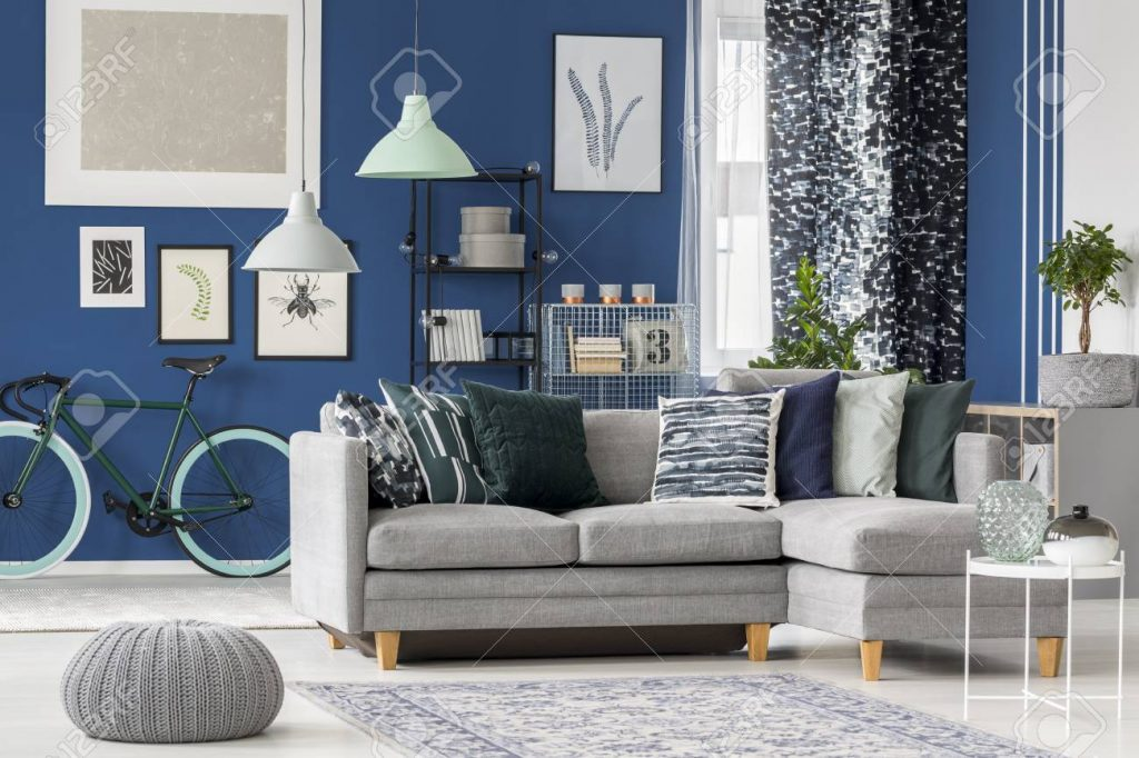 Navy Blue Living Room Design With Gray Corner Sofa Decorative