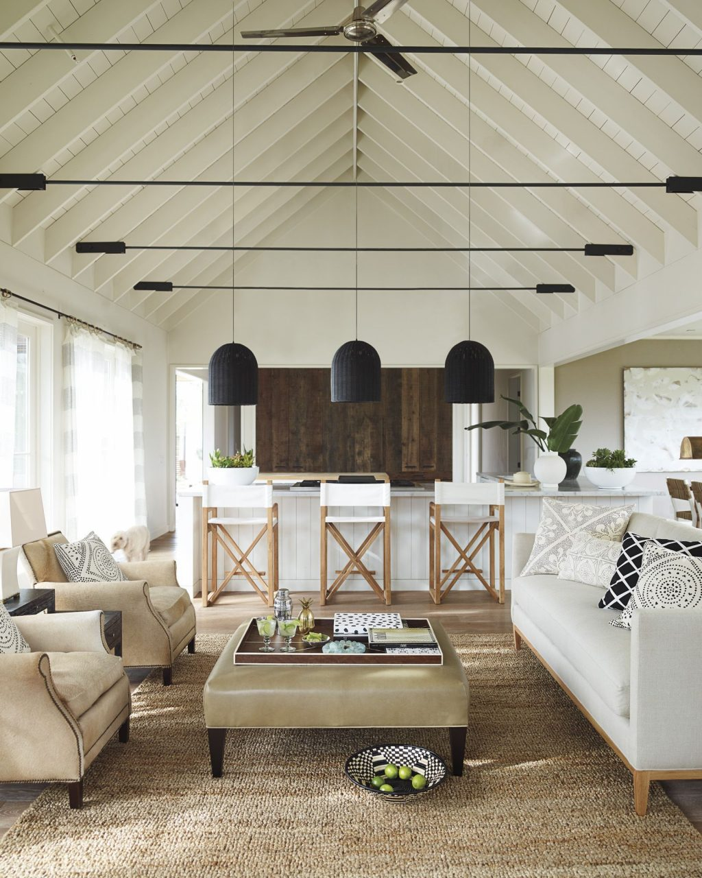 Santa Barbara Pendant In 2019 Lounge Living Room Decor House
