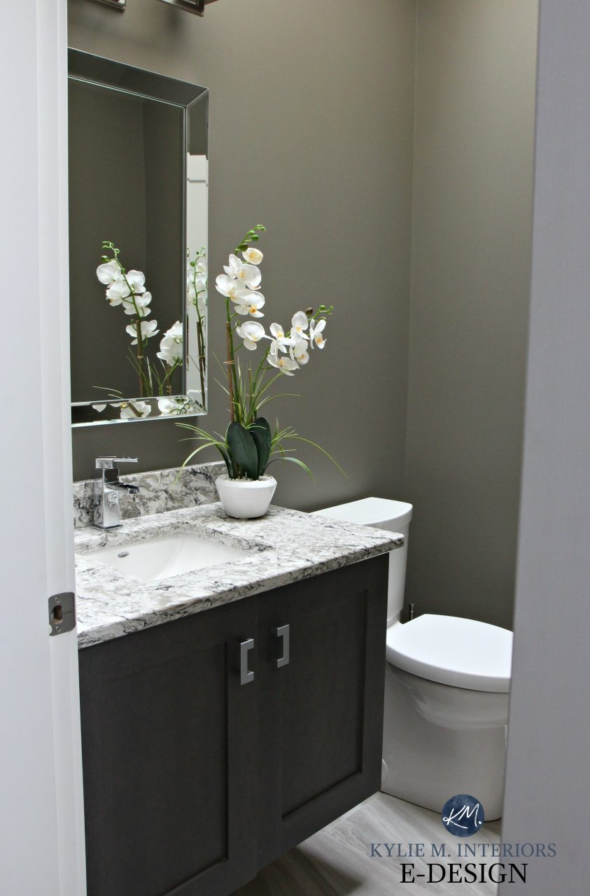 Small Bathroom Powder Room In Sherwin Williams Anonymous With
