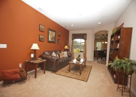 Burnt Orange Accent Wall Living Room