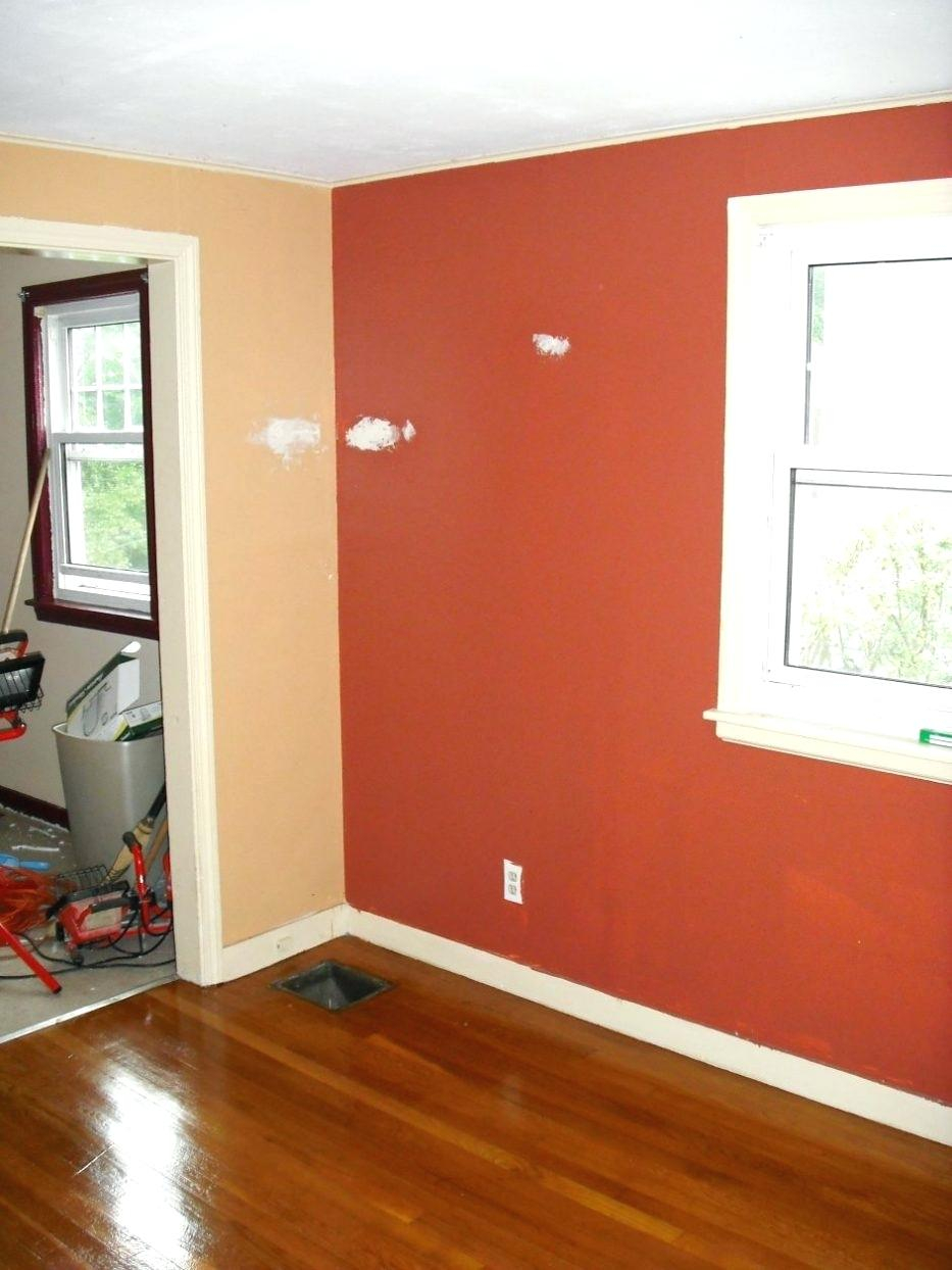 Burnt Orange Bedroom Interior Paint Accent Wall Living Room