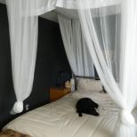 Diy Canopy Bed Curtains Furniture Ideas Deltaangelgroup