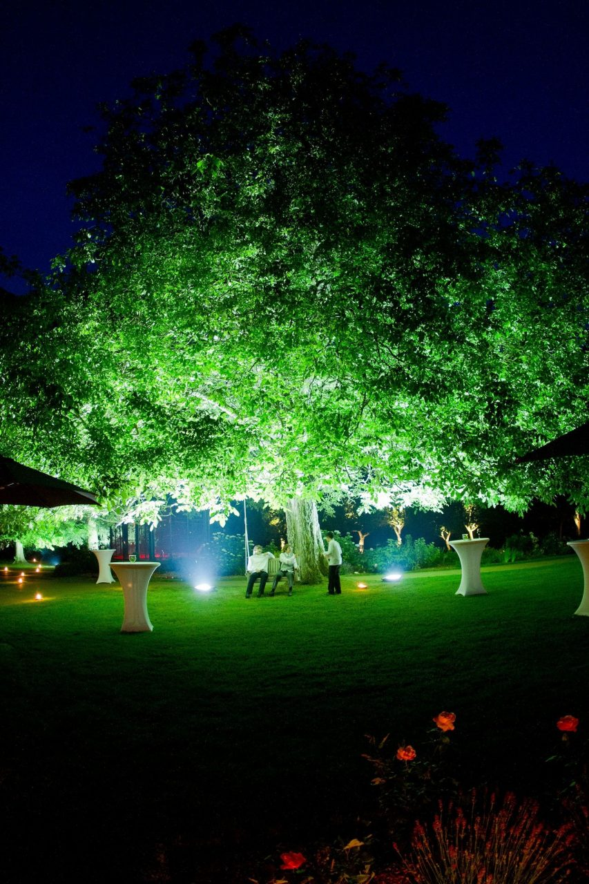Great Example Of Uplighting A Tree So Simple But So Elegant