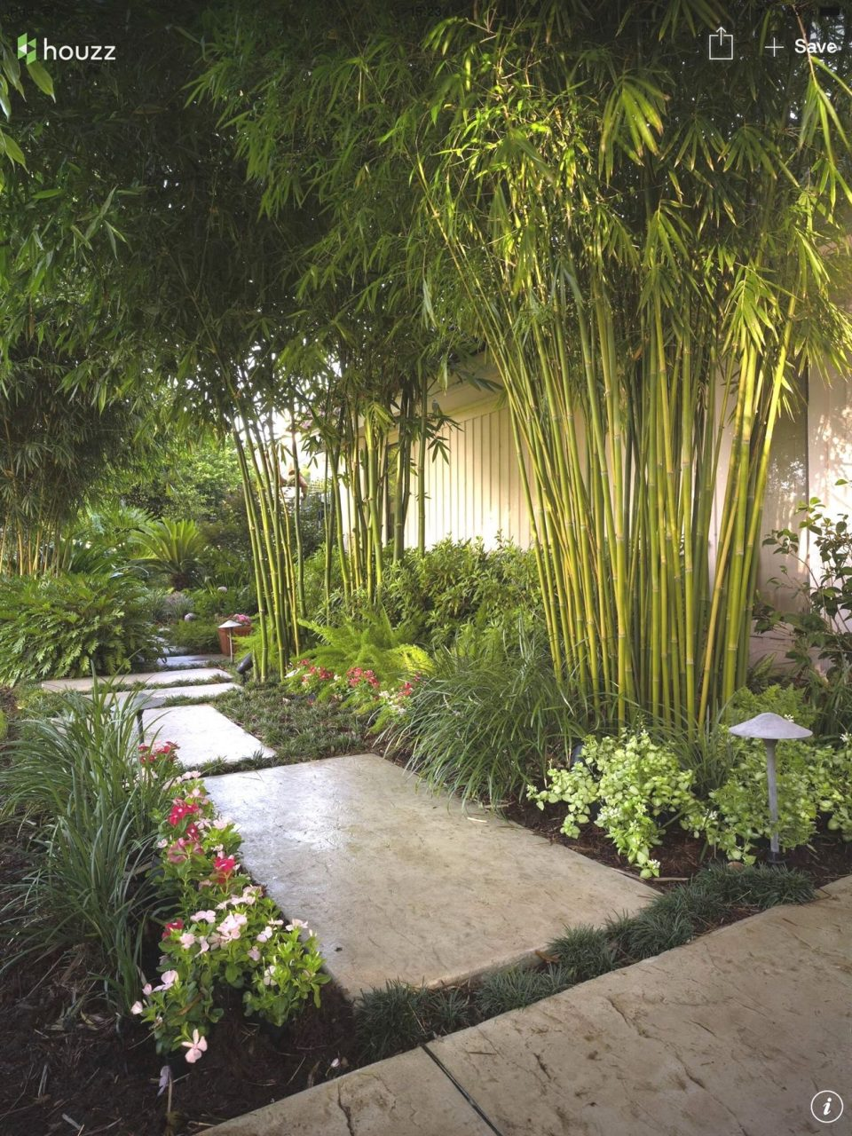 Love The Bamboo And Lighting Japanesegarden Garden Backyard