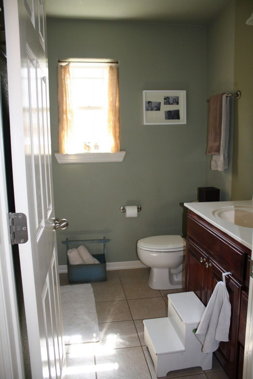 Sage Green Walls White Fixtures Light Tan Floor Bathrooms In 2019