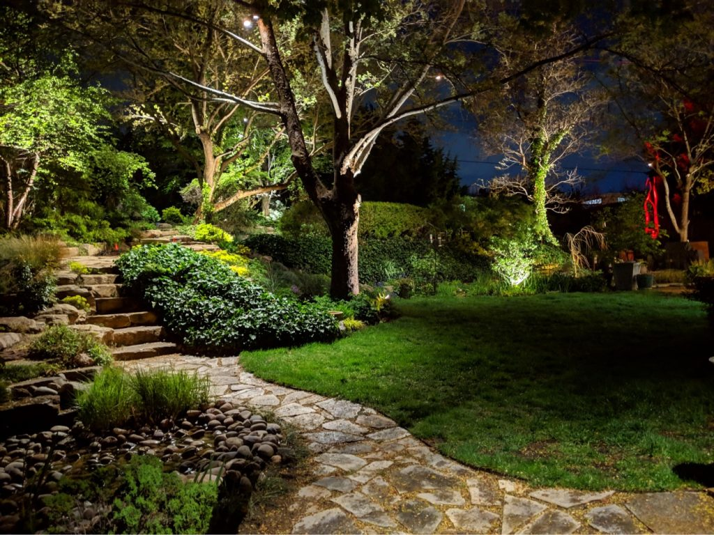 Tree Accent Lighting Ideas For Beautiful Landscape Lighting