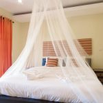 White Bed Canopy Netting