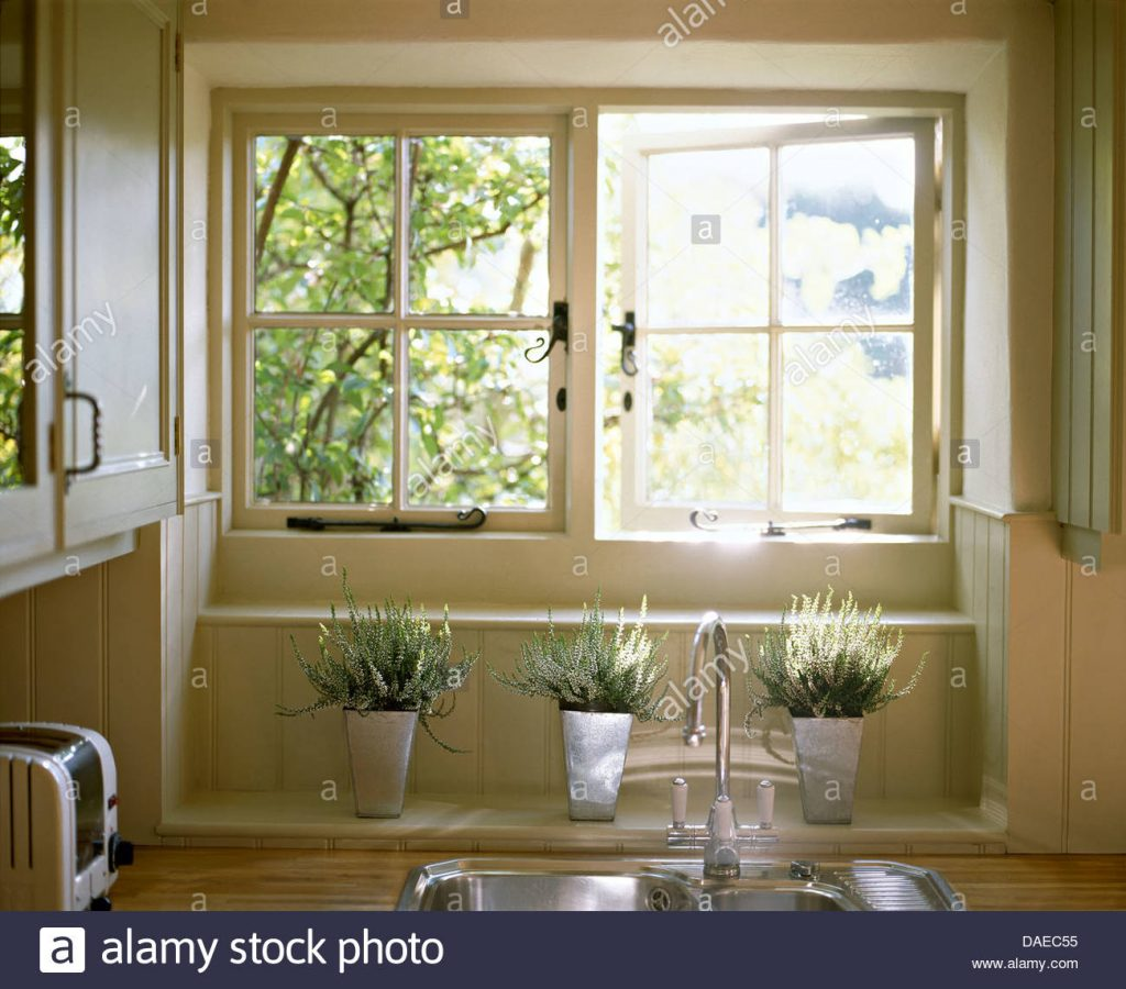 White Heather In Steel Pots Below Open Casement Window Above Kitchen