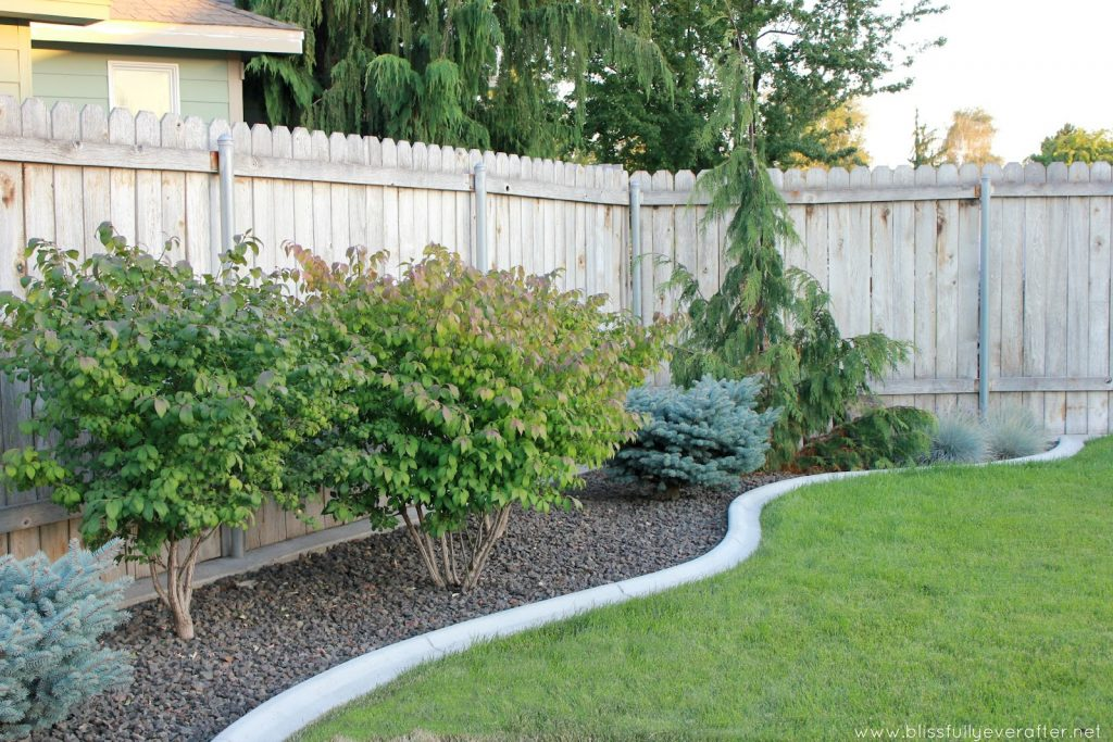 Back Yard Landscaping Ideas On A Budget Deck With Fire Pit Deck